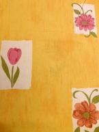 Tulipán v okně
