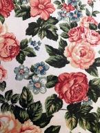 Růže Anglie výrazná
